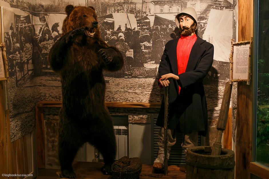 медведи дрессированные