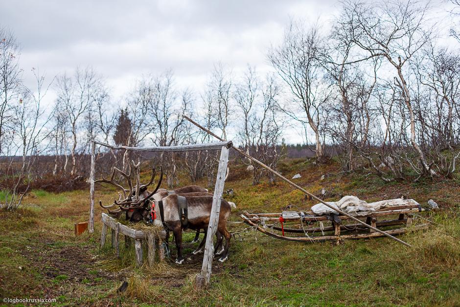 Автопутешествие в Мурманск. Ловозеро